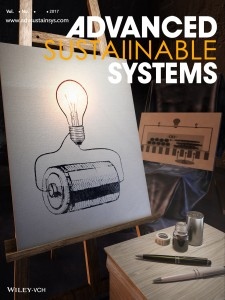491.Cover Preview_ADVANCED SUSTAINABLE SYSTEMS